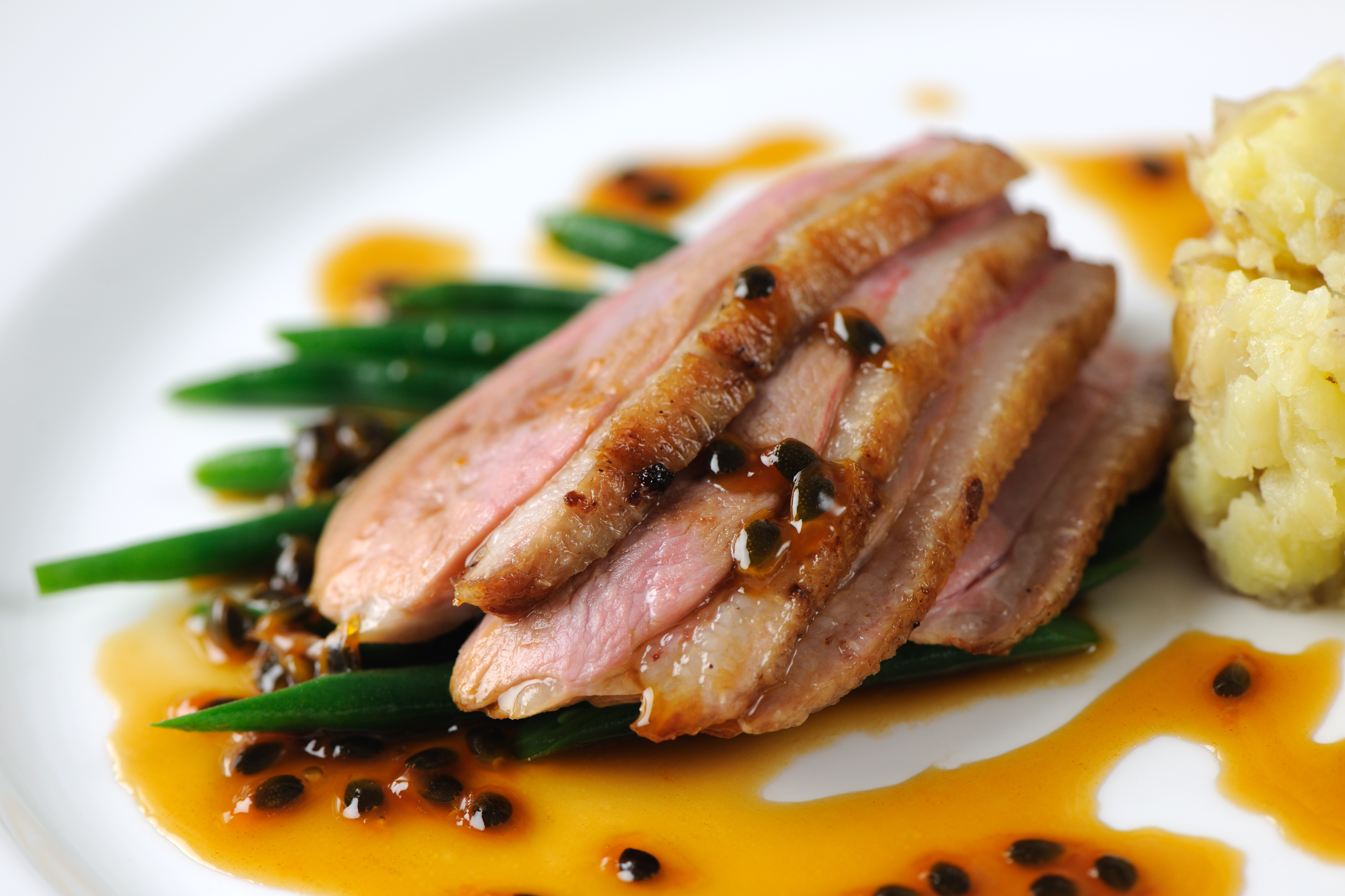 Duck meat recipes