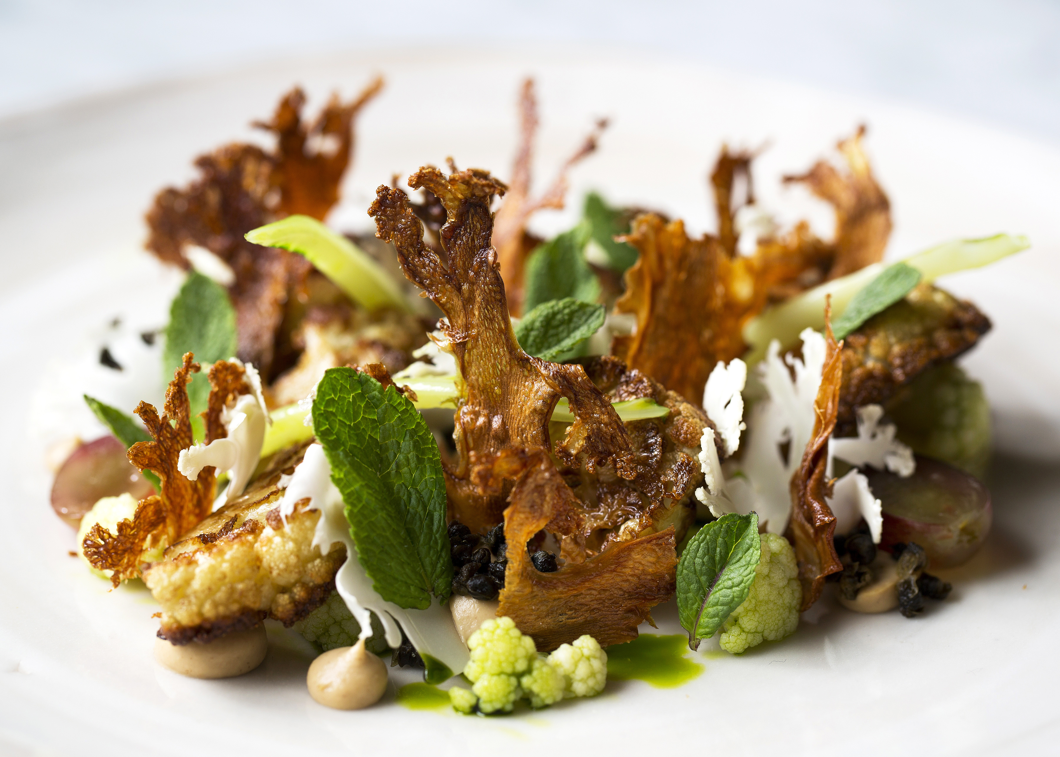 Vegetarian Recipes   Great British Chefs. Fine Dining Vegetarian Dishes. Home Design Ideas