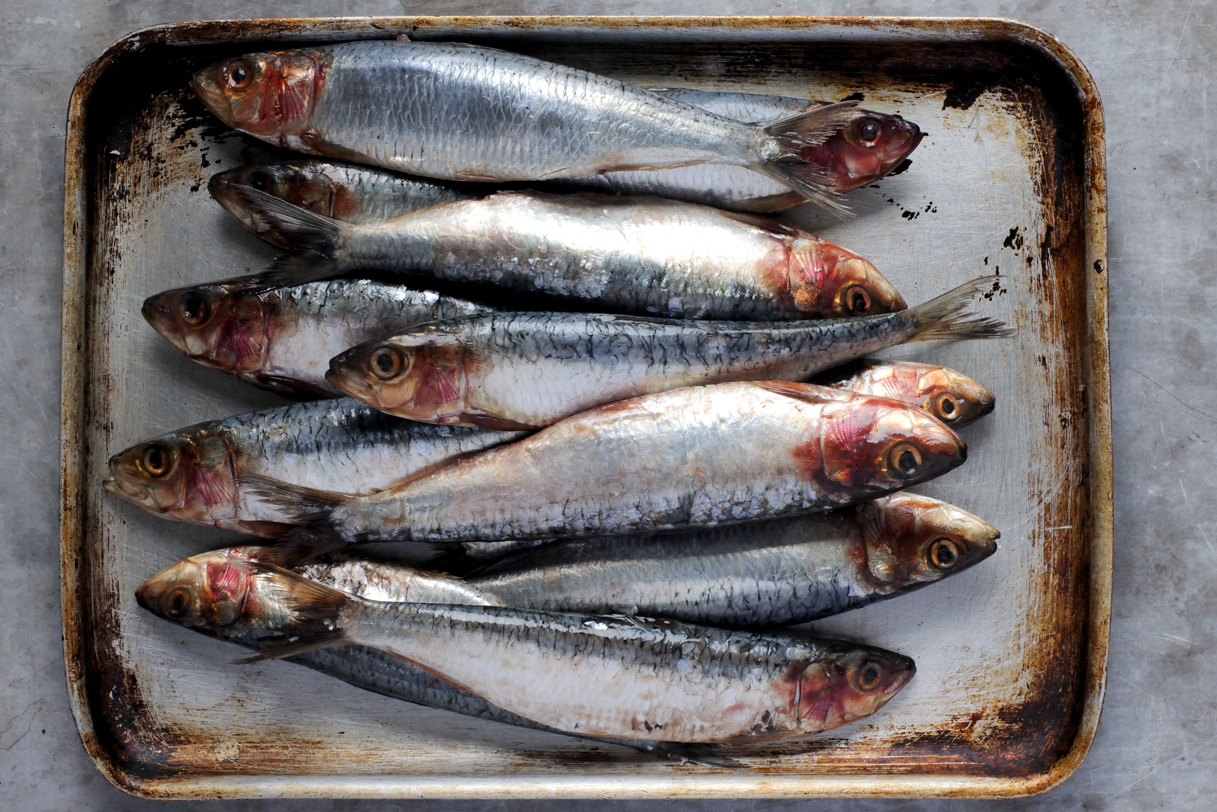 How to Cook Sardines - Great British Chefs