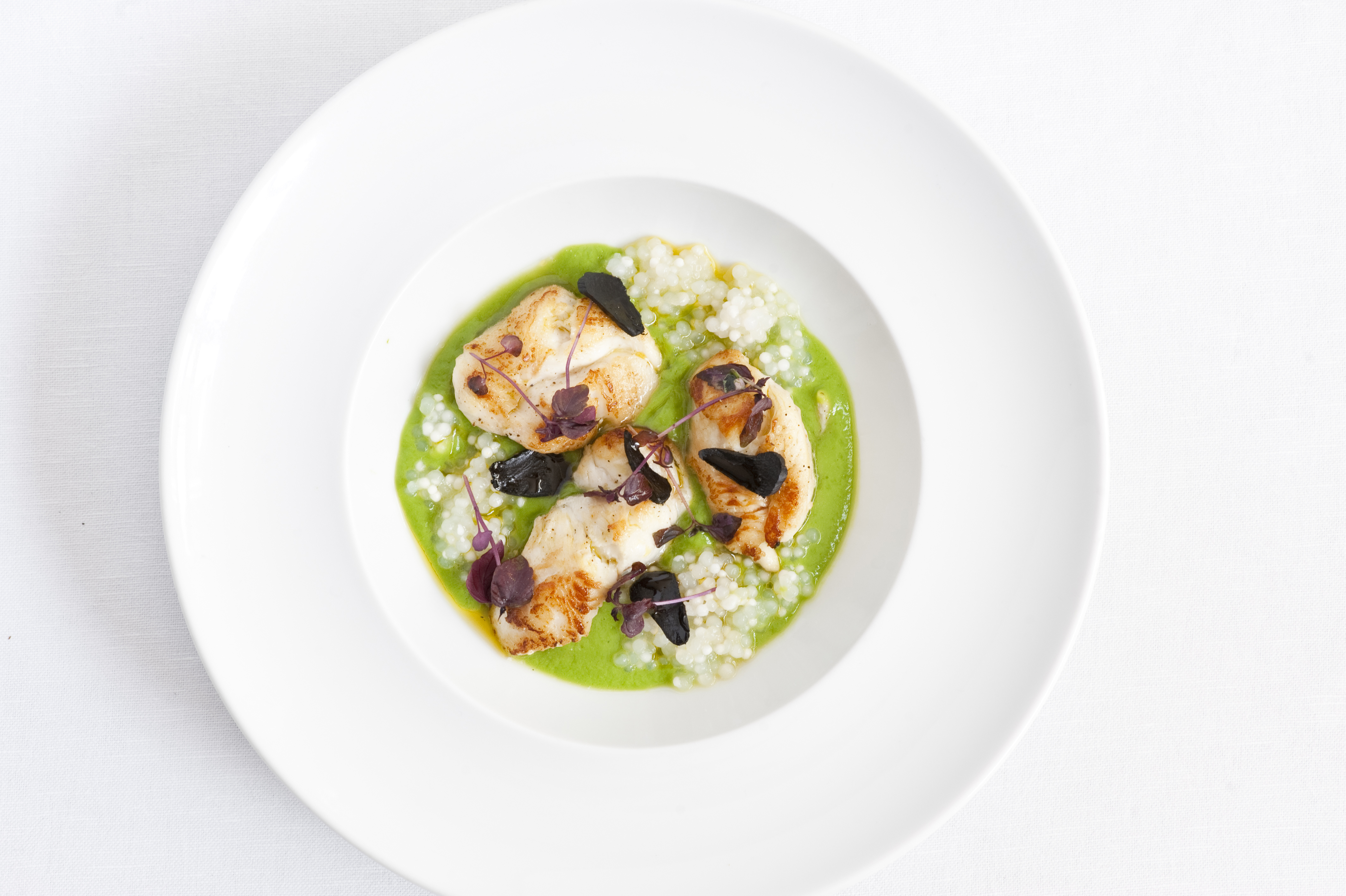 Italian Starter Recipes - Great Italian Chefs