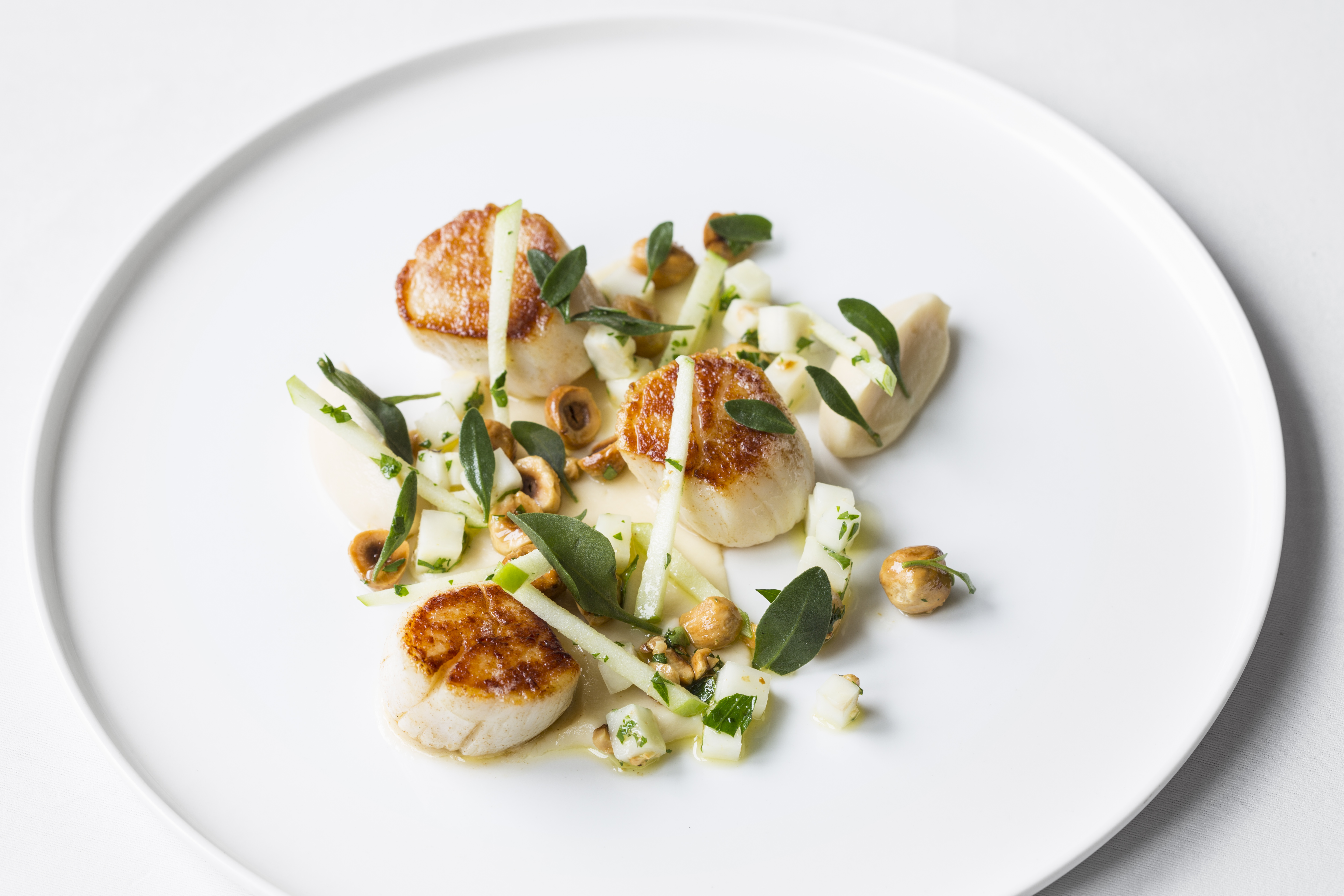 Scallop starter recipes great british chefs fandeluxe Choice Image
